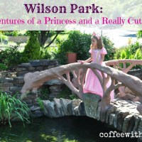 The Adventures of a Princess and a Really Cute Dragon: Wilson Park