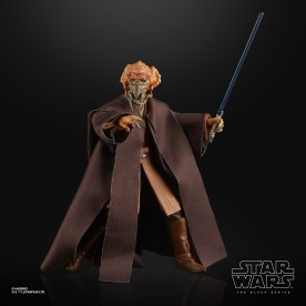 STAR WARS THE BLACK SERIES 6-INCH PLO KOON Figure (2)