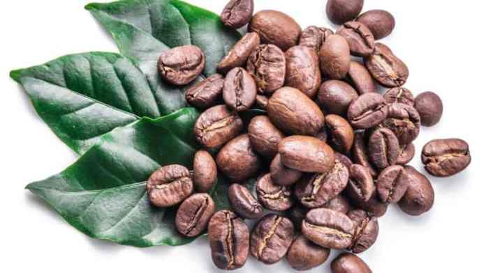 kona coffee 100% authentic beans