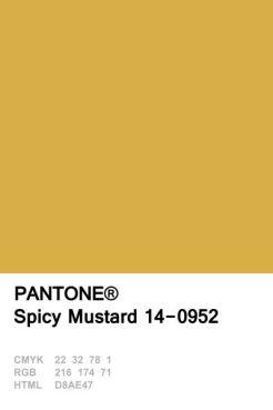 spicy-mustard