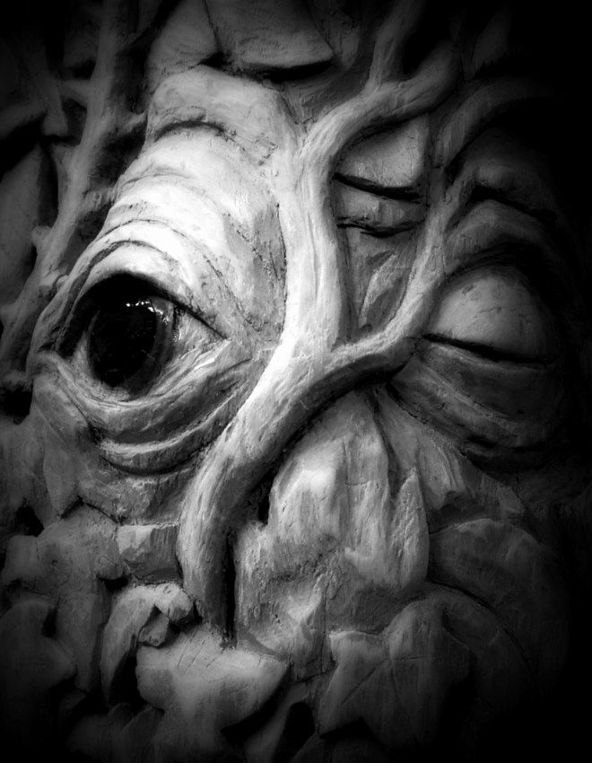 14_-_Lesidhe_-_Guardians_of_the_forest_-_Wood_carved_cedar_and_photographed_in_black_and_white.
