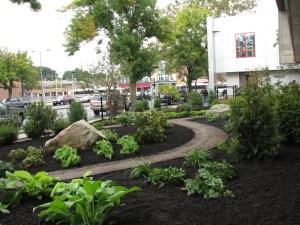 The Roxbury YMCA garden after planting