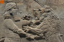 Ashurbanipal, definition and study. A-Z index of Cognitio.
