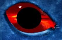 SOHO probe, records huge triangular UFO that orbits the Sun. Original article by Alessandro Brizzi.