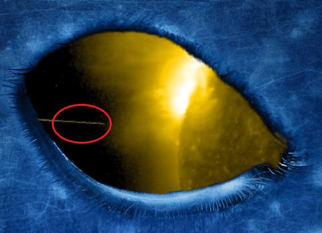 Alien spaceships, filmed around the Sun