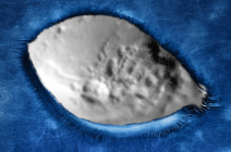 Mars, ancient alien structures discovered!