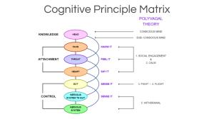 CPM Based on Polyvagal theory | Cognitive Principle Matrix