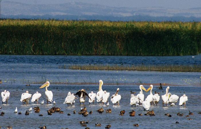 Gala Gölü Milli Parkı