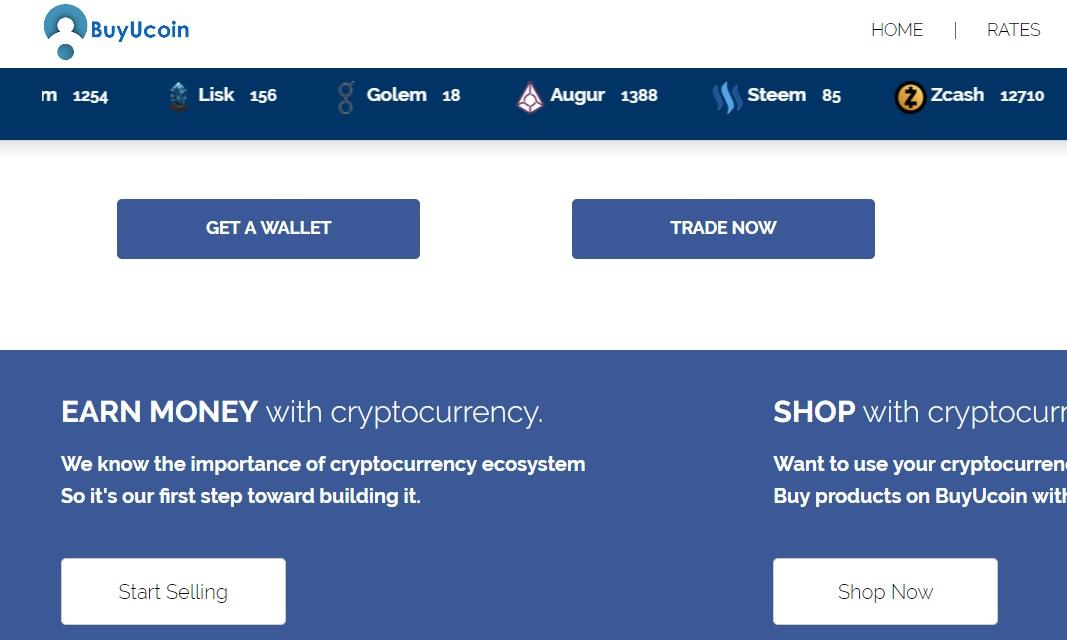 best bitcoin to dollar Egypt