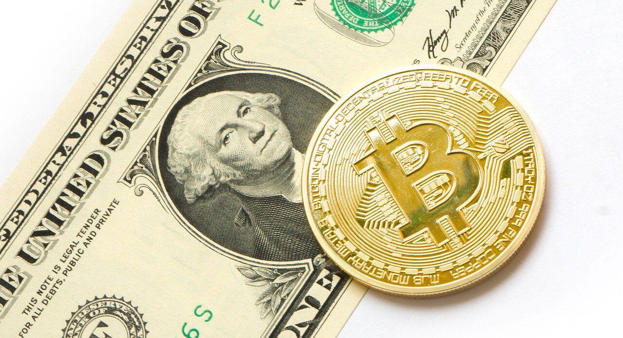 Bitcoin vs Dollar