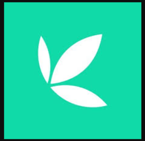 Bamboo investment app