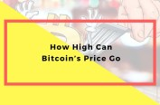 How High Can Bitcoin's Price Go