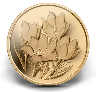 2010-PRAIRIE-CROCUS-PURE-GOLD-COIN