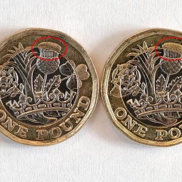 First new £1 coin error found with missing detail on the thistle