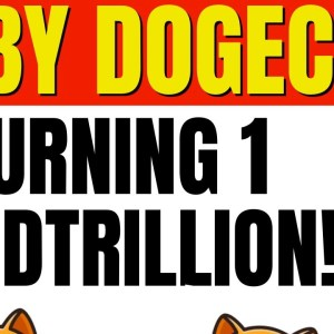 BABY DOGECOIN! HUGE 1 QUADTRILLION BABY DOGE COIN BURN THIS FRIDAY!