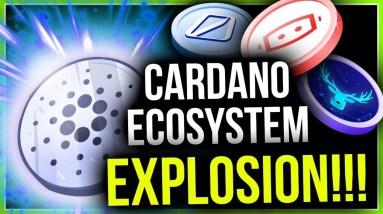 CARDANO'S BIGGEST UPGRADE IMMINENT! (5 BEST ECOSYSTEM PICKS)