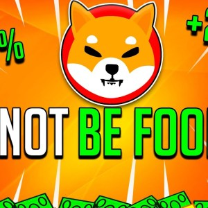 HERE IS WHAT WILL HAPPEN TO SHIBA INU COIN IN 48 HOURS! (SHOCKING!) - SHIB DeFi