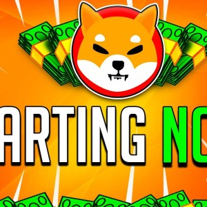 SHIBA INU COIN: IT'S NOW STARTING! 🔥 HUGE SHIB STRATEGY REVEALED! - SHIB Toekn Crypto Real Estate