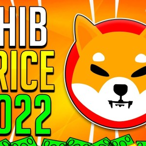 HOW MUCH YOUR SHIBA INU TOKENS WILL BE WORTH IN 2022? - SHIB Crypto
