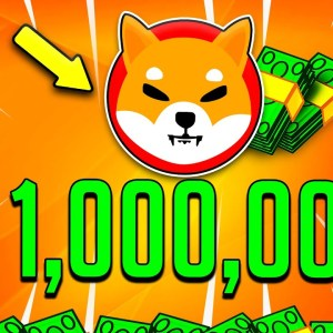 BECOMING A SHIBA INU MILLIONAIRE WITH 1000$! - How To Become A SHIB Millionaire!