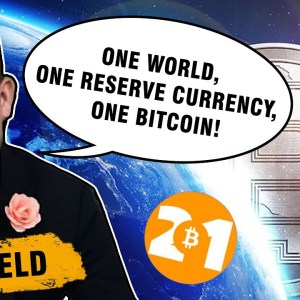 Can Bitcoin become the world's reserve currency? | Exclusive interview with Dan Held