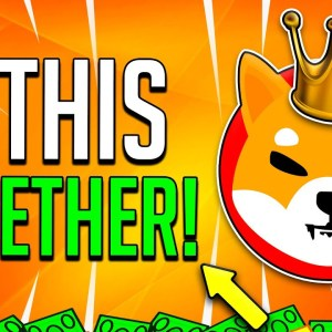 SHIBA INU COIN WE FINALLY DID THIS TOGETHER! GREAT NEWS!