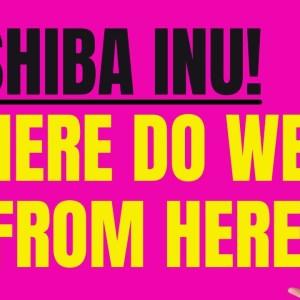 SHIBA INU - WHERE DO WE GO FROM HERE?