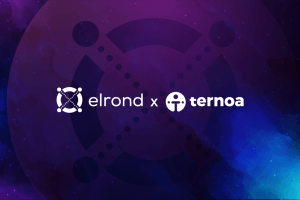 ternoa expands nft time capsules compatibility partnering with elrond