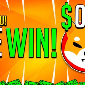 SHIBA INU HOLDERS FINALLY WE WIN! - SHIB #1 CRYPTOCURRENCY IS USED AS PAYMENT!