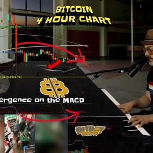 Bitcoin Sending Mixed Signals (Crypto Market Testing New Trends)