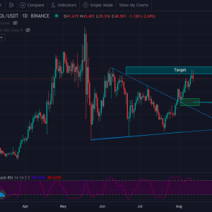 chart mirroring get live access to pro crypto traders charts