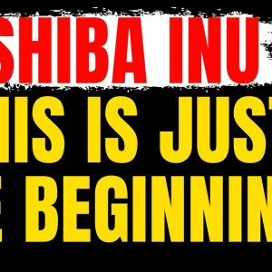 SHIBA INU COIN NEWS TODAY - THIS IS JUST THE BEGINNING!