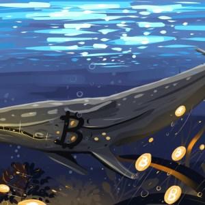 whales holding bitcoin btc after pump and dump signals santiment data shows