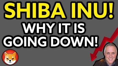 SHIBA INU IS DROPPING - DON'T PANIC! HERE IS WHY SHIBA INU COIN IS GOING DOWN!