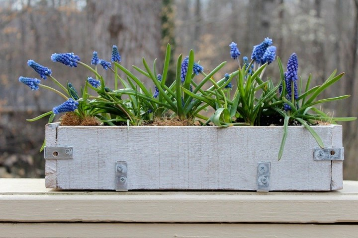 Tips to Set Up Planter Box Garden