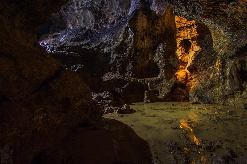 Probewohnen in der Bärenhöhle