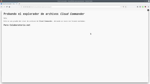 Captura de pantalla que muestra el visor de archivos abriendo uno, en formato Markdown.