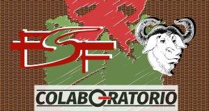 Contra un fondo similar a una cesta de mimbre oscuro, vemos los logos de la FSF y del Proyecto GNU y, bajo ambos, el logo de Colaboratorio. Una caja de regalo de fondo decora el cuadro.