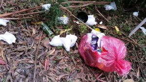 A Melbourne tourist took this picture of dumped garbage at Stevenson's Falls near Forrest this week. People also dumped rubbish at Beauchamp Falls.
