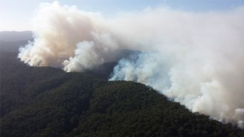 Authorities knew they had a battle on their hands last week when the Jamieson Track fire started. Picture supplied.