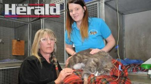 Winchelsea's Christina Mackey and Rhodes Veterinary Clinic vet nurse Lauren Price with Mrs Mackey's cat Takoda after the veterinarians amputated its leg and tail.