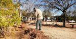 Parques públicos continuarán cerrados hasta nuevo aviso: Servicios Públicos