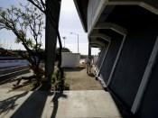 03 Continúa la desinfección en espacios deportivos de Los Cabos 6