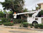 Prevé alcaldesa de Los Cabos Armida Castro que en una semana se restablezcan los servicios públicos al 75%