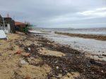 Continúan banderas negras en las playas de Los Cabos: Zofemat