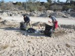 A fin de preservar la salud de la ciudadanía, personal de Servicios Públicos continúa con la limpieza de arroyos en Los Cabos