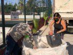 Reduce, reutiliza y recicla; evita que más basura llegue a los Rellenos Sanitarios de Los Cabos