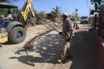 Cerca de 90 mil toneladas de ramas y cacharros se han retirado de la vía pública de Los Cabos