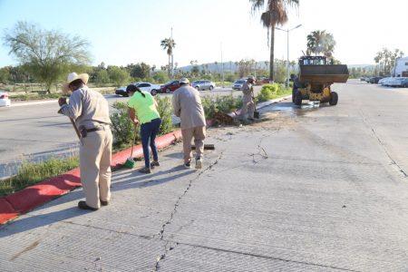 El Gobierno de Los Cabos redobló esfuerzos para la limpieza de calles y avenidas