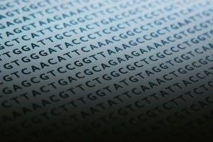 ADN Puntos a Dios